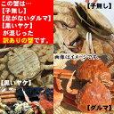 【訳あり】セコガニ(親がに・せいこ蟹)(ダルマ...