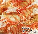 【スピード出荷】山陰沖産オニエビ[ 生 ] 500セット(12尾前後入)【お刺身・塩焼き♪】