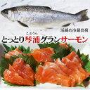 【送料無料】とっとり琴浦グランサーモン(養殖銀鮭・ギンザケ)1匹(800-900g程度)[