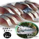 日本海産天然サバのフィーレ6枚(480g)セット〔冷凍〕シメサバ・しめさば
