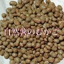 むかご 自然薯のムカゴ 500g 平成28年産新物!