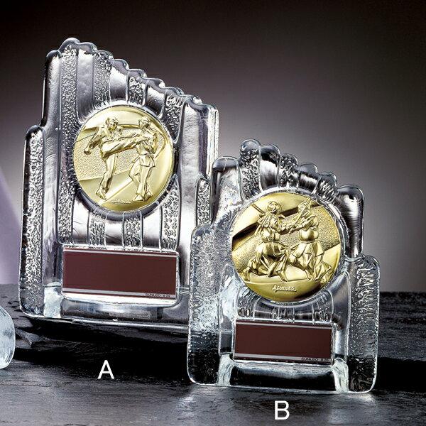 フリーセレクションメダル選択楯YCZ-8955C【保存箱付】#26
