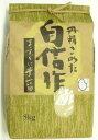 特選 平成30年 新米 熊本県 菊池 七城米「ヒノヒカリ」5kg 穀物検定協会 10年 連続 特A 美味しい おいしいお米