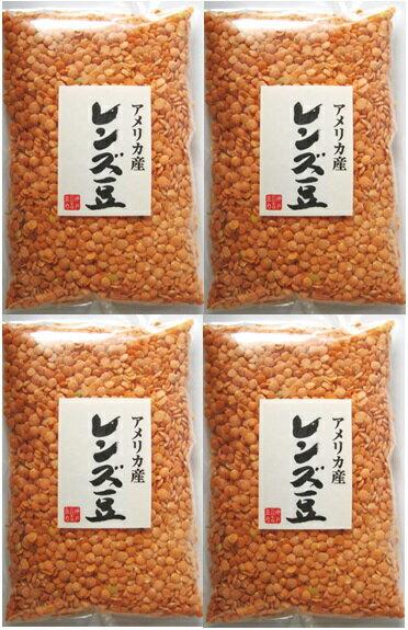 豆力 豆専門店のレンズ豆(赤:皮むき) 1kg...:tabemon-dikara:10000331