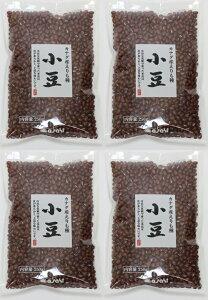 豆力 カナダ産 業務用 小豆 (あずき) 1kg
