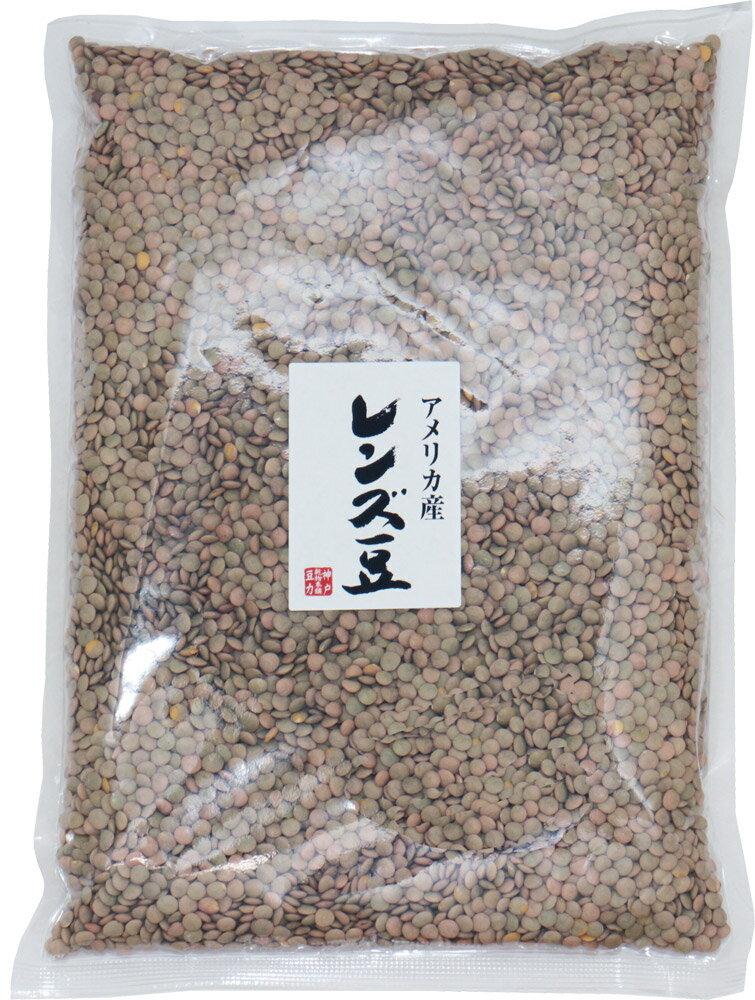 まめやの底力 大特価 アメリカ産レンズ豆(皮つき) 1Kg【限定品】...:tabemon-dikara:10000440