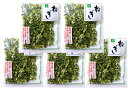 こだわり乾燥野菜 熊本県産 ねぎ 10g×5袋 【吉良食品 ドライ 干し 国内産100%