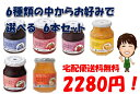 【宅配便送料無料】信州須藤農園 砂糖不使用 100%