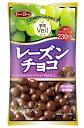 グルメな栄養士セレクト洋菓子 レーズンチョコ 47g  【正栄デリシィ チョコレート ぶどうチョコ】