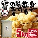 玄米◆5kg◆世界遺産の地、熊野の玄米コシヒカリ『那智のめぐみ』【たまな食堂推奨】【送料無
