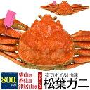送料無料 松葉ガニ(ズワイガニ)姿 茹で冷凍【800g前後×...