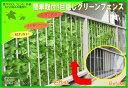 目隠しグリーンフェンス1×3m【緑のカーテン グリーンカーテ...