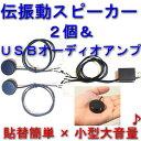 伝振動スピーカー2個 &USBオーディオアンプset