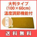 赤外線コスモパックDX100・温度調節付|【ひざかけプレゼント】日本遠赤製・赤外線温熱治療器