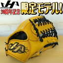 【HATAKEYAMA】ハタケヤマ30周年記念限定硬式グローブ 外野手用 30thpro-81