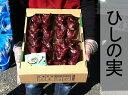 ご当地食材 ひしの実 販売合計約2キログラム 【sta_pre_0901_k】【RCP】【02P01Oct16】