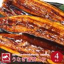 肉厚特大うなぎ 約4人前 たいの鯛 ウナギの蒲焼 180gから200g×2枚 お中元 ビッグサイズ ...