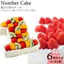 誕生日ケーキアニバーサリーケーキ☆記念の数字を形に!(※1ケタのみ)『ナンバーケーキ』6号 フルーツといちごの2タイプ☆お誕生日はもちろん、敬老の日も!数字の形のケーキでお祝いしよう!