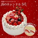 【特製 クリスマスケーキ】苺のキャンドル 5号 直径15cmご予約受付中!クリスマス向け