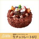 【特製 クリスマスケーキ】生チョコレートケーキ6号 直径18cm【クリスマス ケーキ チョコレート 冷凍ケーキ 大陸/cake tairiku お取り寄せ 通販】【RCP】