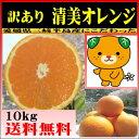 清見オレンジ 10kg 愛媛産 送料無料 <少し 訳あり>