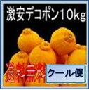 愛媛 激安 デコポン10kg送料無料<少し 訳あり>【minami-special0408】