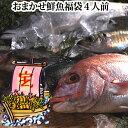 おまかせ鮮魚福袋、限定20セット【送料無料】(4人前)発送は、企画終了後となります。【RCP】
