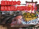 おまかせ鮮魚福袋、限定20セット【送料無料】(2人前)発送は、企画終了後となります。【RCP】