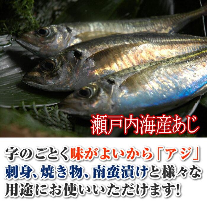 アジ 瀬戸内海産 Sサイズ(130〜150g)...の紹介画像2