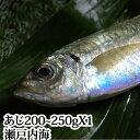 アジ 瀬戸内海産 Mサイズ(200〜250g)【 鯵 あじ 刺身 】