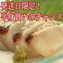 鰆 ( さわら サワラ )3kgの半身( 福岡県、高知県、瀬戸内海のいずれか )お刺身、たたきは格別です。2個買いのみ指定日承ります。2個買い同一カ所のお届けで...