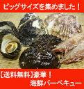 海鮮バーベキュー ビッグサイズセット 豪華版(アワビ2個・(夏場は、岩牡蠣 2個、冬場は冬牡蠣2個)・サザエ2個・ホタテ2個・エビ2尾(解凍)) smtb-KD
