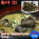 亀の手 (生)500g( カメノテ ペルセベス かめのて )愛媛県産、香川県産、愛知県産のいずれか( 塩ゆで、お味噌汁、バーベキューにも)