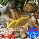 殻付き ホッキ貝 ( 活き ほっき貝 北寄貝 ホッキガイ )1kg(3〜4個)