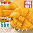 アップルマンゴー 台湾産 5kg【期間限定・送...