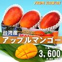 アップルマンゴー 台湾産 3玉【期間限定・送料無料】