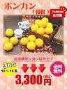 御歳暮 台湾 ポンカン 3kg(3Lサイズ)【期間限定・送料無料】