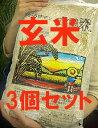 【まとめ買い】【(常温便)送料込み/クール代別途】有機JAS認定 太陽の有機米(つがるロマン)玄米 15kg(5kg×3袋)※自然農法米 ※令..