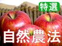 【特選品】竹嶋有機農園の自然農法りんごふじ <5kg>※4月以降は、冷蔵便でのお届けとなります(クール便代210円別途加算)