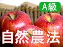 【11/28以降発送予定】【A級品】竹嶋有機農園の自然農法りんごふじ <5kg>