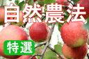 【特選品】竹嶋有機農園の自然農法りんごジョナゴールド <5kg>※残り僅かのため、売り切れの際はご容赦ください。
