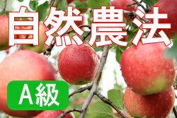 【10/30以降発送予定】【A級品】竹嶋有機農園の自然農法りんごジョナゴールド <15kg(3段詰め)>※【常温便送料込・同梱不可】