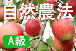 【A級品】竹嶋有機農園の自然農法りんごジョナゴールド <15kg(3段詰め)>※【常温便送料込・同梱不可】