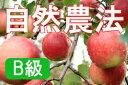 【B級品】竹嶋有機農園の自然農法りんごジョナゴールド <5kg>※ワケあり・傷あり 家庭用※残り僅かのため、売り切れの際はご容赦ください。