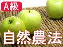 【A級品】竹嶋有機農園の自然農法りんご王林 <5kg>