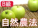 【B級品】竹嶋有機農園の自然農法りんご王林 <5kg>※ワケあり・傷あり 家庭用