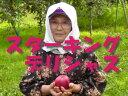 【★数量限定品】【★10/12以降発送予定】【A級品】竹嶋有機農園の自然農法りんご スターキング・デリシャス <約5kg>※売り切れの際はご容赦ください