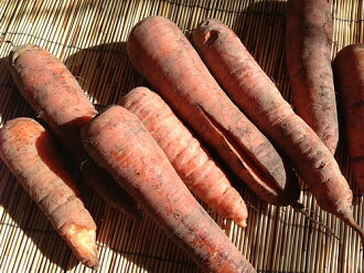☆ organic or natural farming carrots 1 kg ( translation and B grade products and economy )