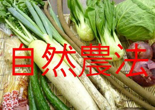 ★ wants fun vegetable set (natural farming / vegetable / special organic one) ★ menu weekly.