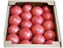【★7/20以降発送予定】【北海道産】有機農法(有機JAS) 俣野さんのトマト 約4kg※サ